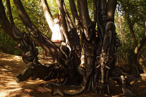 Fairy-tale Tree by MirachRavaia