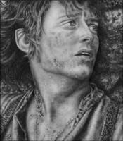 Frodo Baggins by Wicked-Illusion