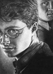Harry Potter and Draco by Wicked-Illusion