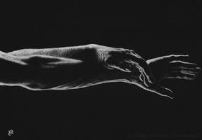 Bodyscapes Series II by Wicked-Illusion