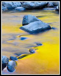 Golden Stream by aFeinPhoto-com