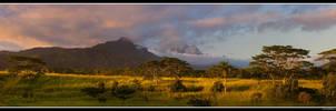 Kauaian Serengeti by aFeinPhoto-com