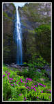 Flowering Falls by aFeinPhoto-com