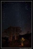 Celestial Waltz by aFeinPhoto-com