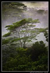 Mists Of Lemuria-Technicolor by aFeinPhoto-com