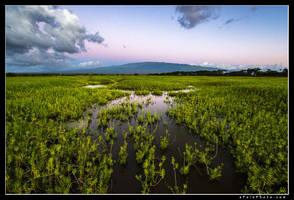 Untitled Haleakela by aFeinPhoto-com