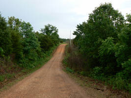 Country Road by nwinder