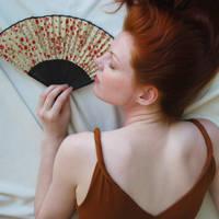 Fan Stock 3 by chamberstock
