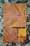 Geometric Autumn I by myp55