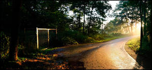 Gate by woopidoo2