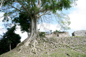 ruins 44. by greenleaf-stock