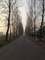 Pathway by loadhe