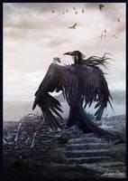 Crow II by strigoides