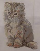 Fluffy Kitten Cross Stitch by canadiankazz