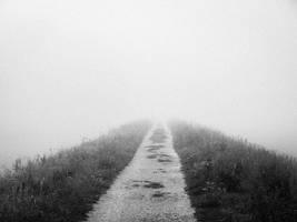 fog by lechmarcin