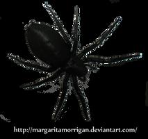 spider_04 by margarita-morrigan