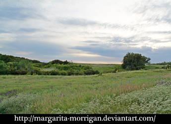 meadow 5 by margarita-morrigan