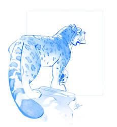 Snow Leopard by BaukjeSpirit