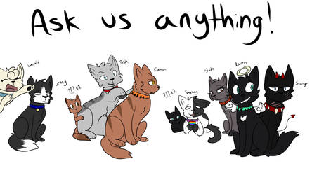Ask us Anything! by StudioFelidae