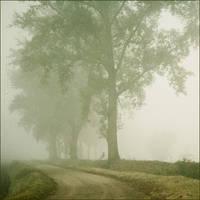 dense Fog by MarioDellagiovanna