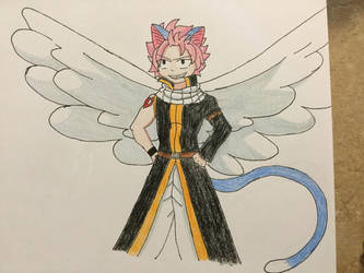 Nappy Dragneel by Furry--Turtle
