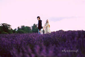 Lavender. by kittysyellowjacket