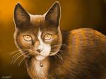 Coffe cat by NatNight9