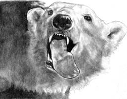 Polar Bear by redghostman