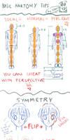 Basic Human Anatomy Tips by starca