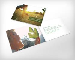 EEI Brochure by TheRyanFord