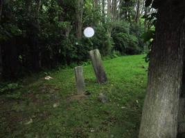 Evans Rd Cemetery 16 by Joseph-Sweet-Stock