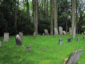 Evans Rd Cemetery 14 by Joseph-Sweet-Stock