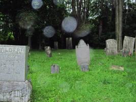 Evans Rd Cemetery 13 by Joseph-Sweet-Stock