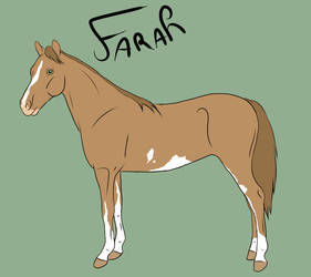 GB Far Off Places - Farah by Happy-Horse-Stable
