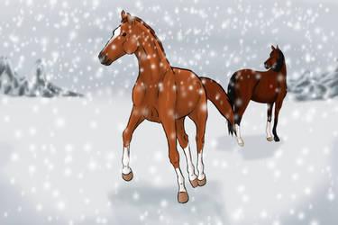 Secret Santa Equine Nation by Happy-Horse-Stable