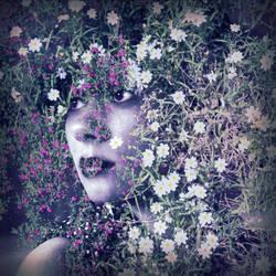 Wildflower by BusybeeSarahD