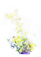 Flower arrangement by Itsadequate