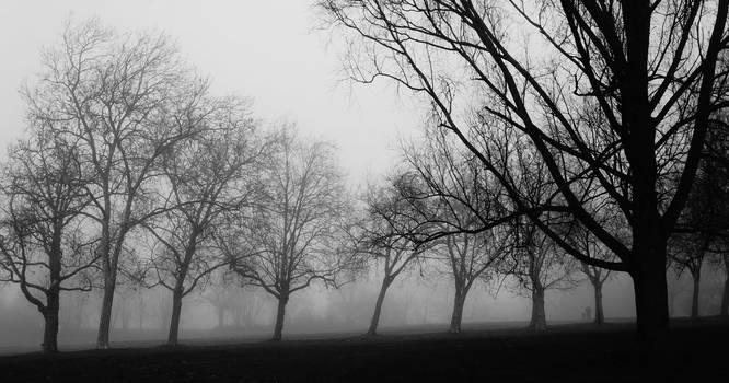 Hampstead Heath by Itsadequate