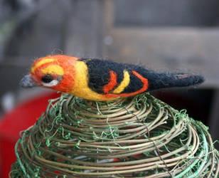 bird 1 by basia-hs
