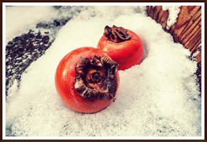In snow II by zviad1i