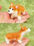A Corgi in the Hand by HowManyDragons