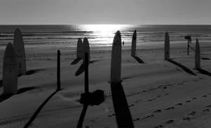 Surfboards in the sun by Tati86