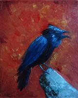Raven by wowywow
