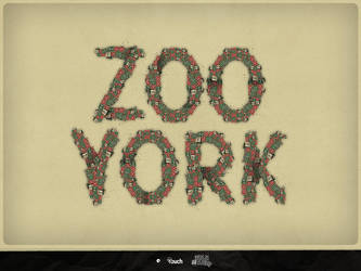 Zoo York Type by dr4oz