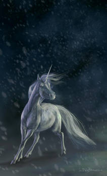 Unicorn by Nightmare-v