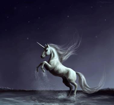 Unicorn. by Nightmare-v