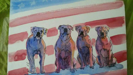 American Beauty by Dashi