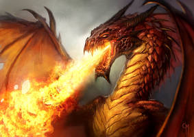 Red Dragon by caiomm
