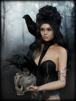 Raven by Ikke46