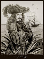 A Pirate's Life by Ellygator